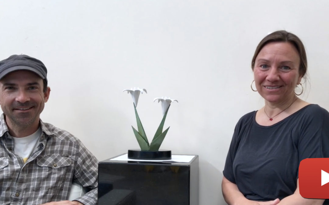 Kevin & Jennifer Box discuss their new sculpture Growing Together